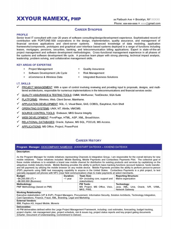 sample executive management resume