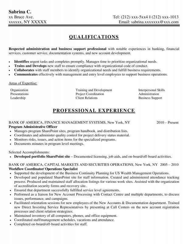 professional support - Professional Resume Writers Nyc